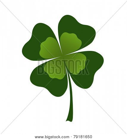 vector shamrock leaf on white background