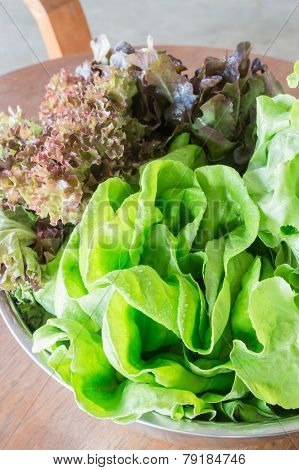 Organic Salad Vegetable Prepare For Cooking