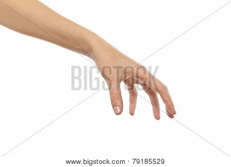 Well shaped female hand reaching for something.