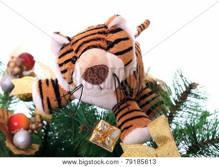Tiger cub on a new-year tree.