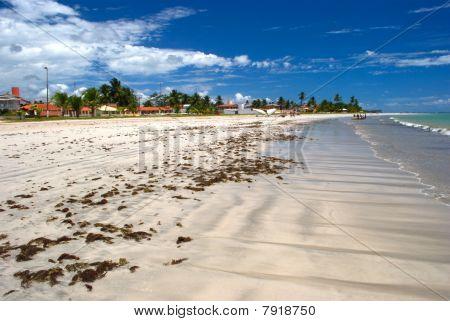 Tropical  beach in Alagoas, Brazil