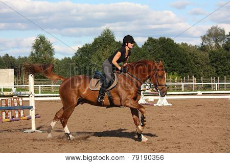 Brunette Woman Riding Brown Horse After The Barrier