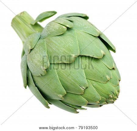 Artichoke Bulb
