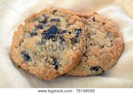Oakmeal Raisin Cookie