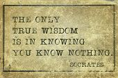 pic of socrates  - true wisdom is in knowing you know nothing  - JPG