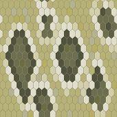 stock photo of pythons  - Snake skin texture - JPG