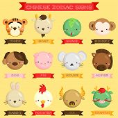 stock photo of chinese zodiac animals  - a chinese zodiac sign with many animal - JPG