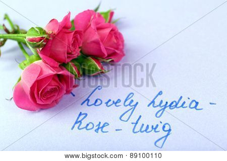 Beautiful rosy twig with inscription on paper background