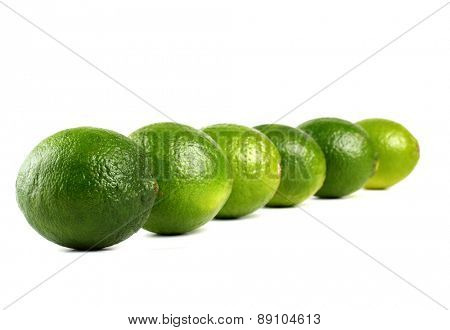 Limes on white background - studio shot