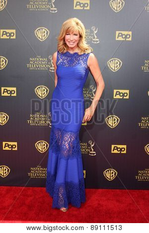 LOS ANGELES - APR 26:  Leeza Gibbons at the 2015 Daytime Emmy Awards at the Warner Brothers Studio Lot on April 26, 2015 in Burbank, CA