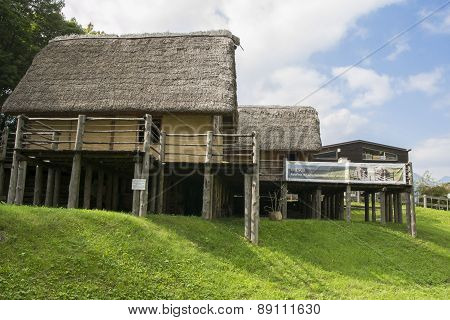 Prehistoric Pile-dwelling
