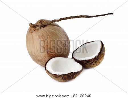 Mature Coconut For Oil Preparing And Coconut Milk On White Background