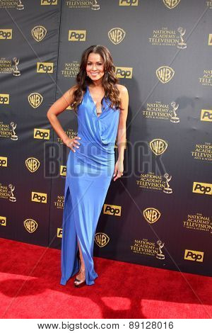 LOS ANGELES - APR 26:  Tracey Edmonds at the 2015 Daytime Emmy Awards at the Warner Brothers Studio Lot on April 26, 2015 in Burbank, CA
