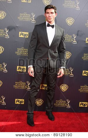 LOS ANGELES - APR 26:  Robert Scott Wilson at the 2015 Daytime Emmy Awards at the Warner Brothers Studio Lot on April 26, 2015 in Burbank, CA