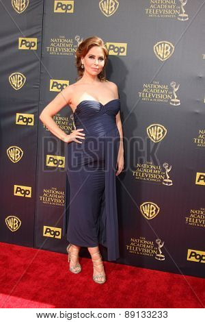 LOS ANGELES - APR 26:  Lisa LoCicero at the 2015 Daytime Emmy Awards at the Warner Brothers Studio Lot on April 26, 2015 in Burbank, CA