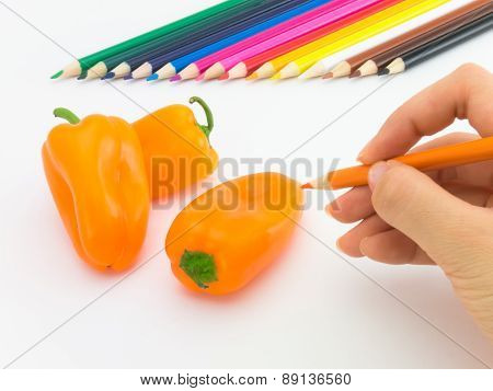 Drawing Paprika