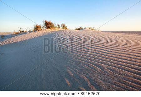 Wind Pattern On Sand Dune