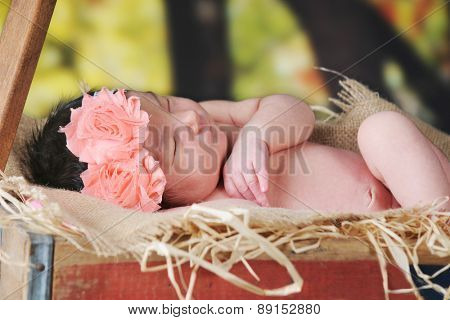 A beautiful newborn girl sleeping outside in a rustic hay-filled wagon.