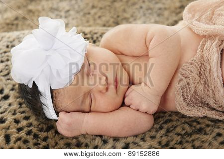 Close-up of an adorable newborn contentedly sleeping on leopard-skin textile,