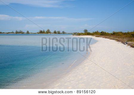 Tropical Beach With White Sand