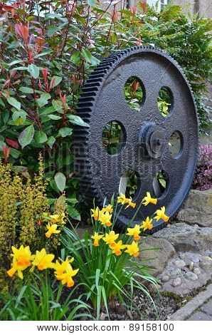 Old Cog in Garden