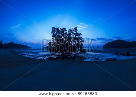 Trees on beach and sunrise at koh yao noi in thailand