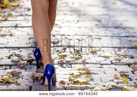 woman's legs in the park