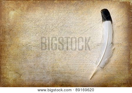 Eagle feather lying on a grunge piece of wood with copy space