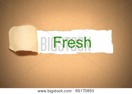 Packaging Paper Torn To Reveal Fesh