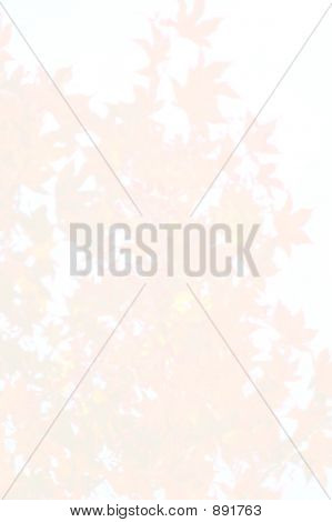 Stationary Blank Autumn