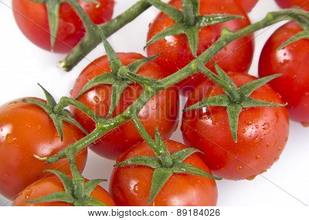 tomatoes on a vine isolated on white background