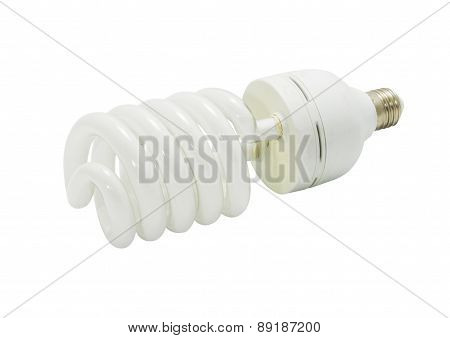 bulb spiral isolated on white background