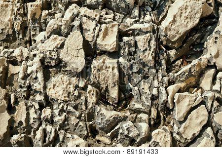 Eroded Dalmatian Limestone - 9161