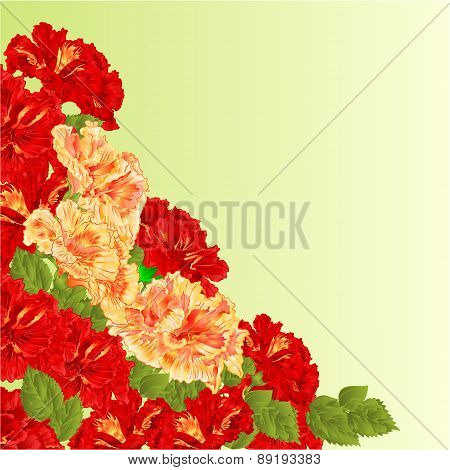 Flowering Shrub Red And Yellow Hibiscus Vector