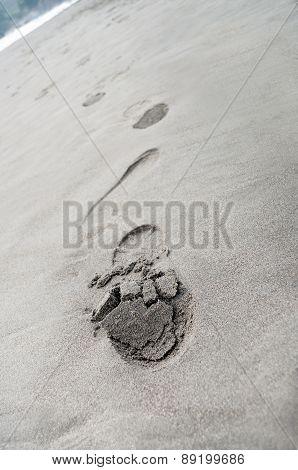 Footprints On The Beach Sand