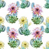 pic of cactus  - Beautiful vector pattern with nice watercolor cactus - JPG