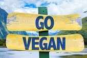 stock photo of vegan  - Go Vegan sign with mountains background - JPG