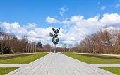 image of municipal  - Jan Kasprowicz municipal Park one of the most popular walking sites in Szczecin Poland - JPG