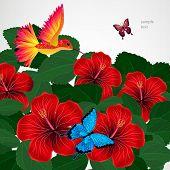 pic of jungle birds  - Floral design background - JPG