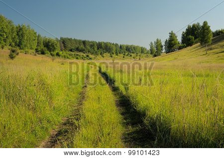 Abandoned Country Road In Green Grass With Trees Far Away And Blue Sky