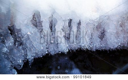 ice water. Icicles hanging from the branch resulting from the melting snow