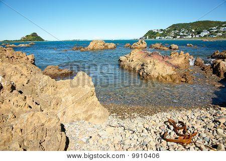 Kelp Lies On Stony Beach In Foreground.