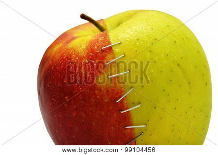 Apple Stapled Together