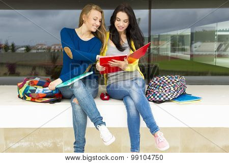 Beautiful and happy teenage students studying together in the school