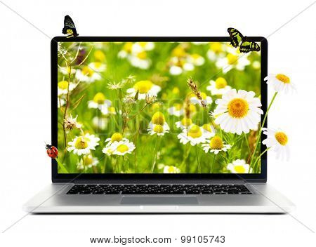 Laptop with nature wallpaper on screen isolated on white