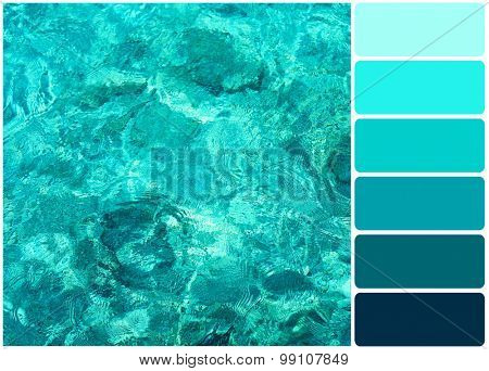 Clear ocean water and palette of colors