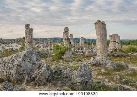 Stone Forest (Pobiti Kamani) in Bulgaria