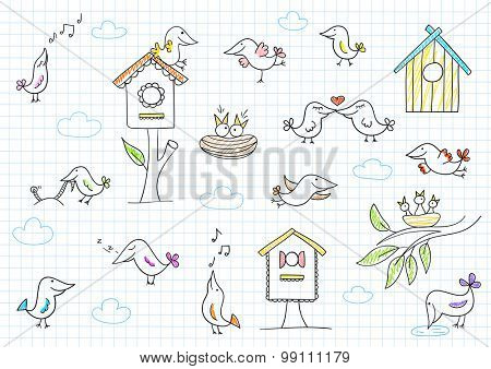 Collection of cute birds. Vector sketch on notebook page