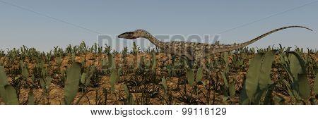 walking coelophysis panorama image