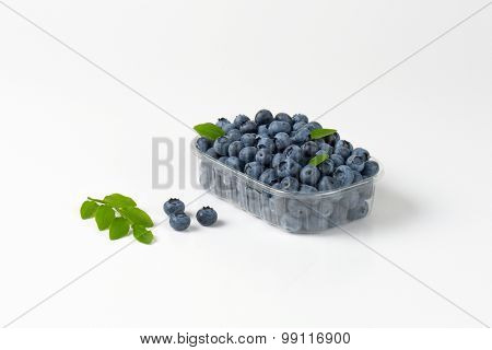 freshly gathered blueberries in the plastic box